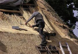 rieten dakkapel plaatsen